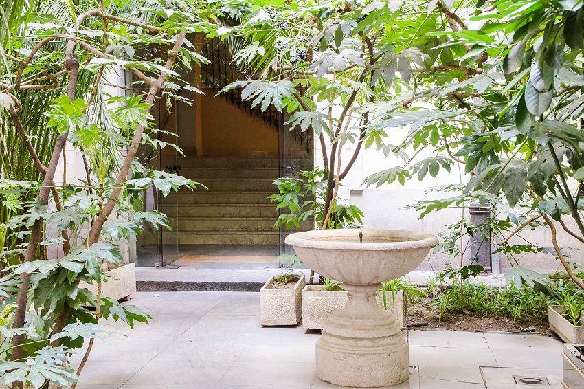 Decorar con plantas en interiores y exteriores: la vivienda de Borja.